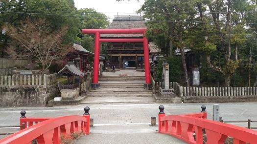 kawasemi10.jpg