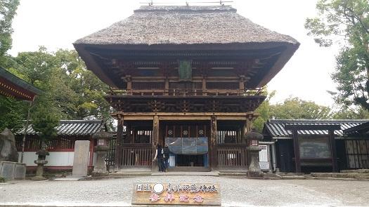 kawasemi11.jpg
