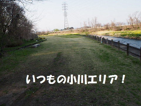 P3310114.jpg