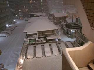 ブログ2 0123雪 (1)