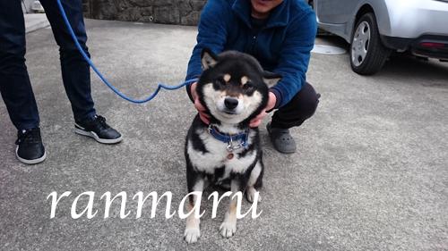 まるちゃん2018033103