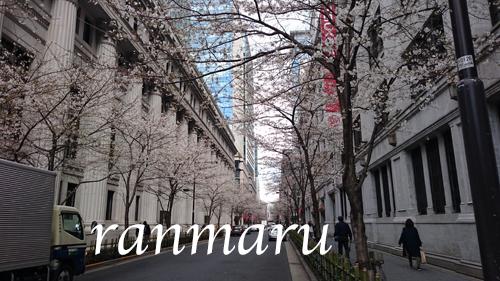 まるちゃん2018032706