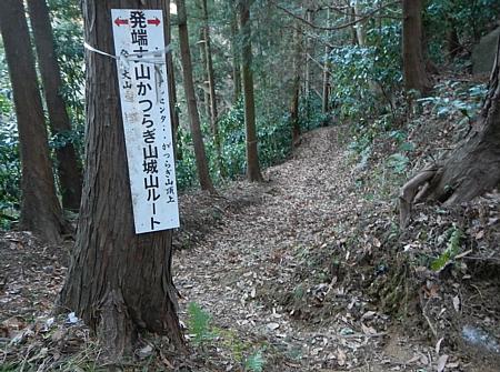 201801_Hoxtutanjouyama_22.jpg