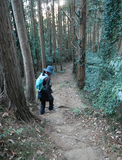 201801_Hoxtutanjouyama_25.jpg