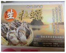 長崎県玄界灘の牡蠣7