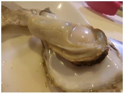 長崎県玄界灘の牡蠣4