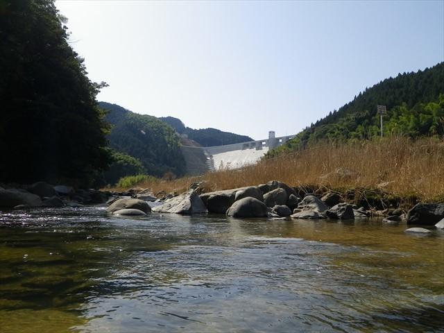 いらはらダム下流域