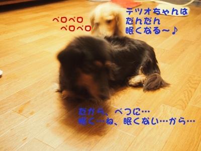 写真4688(№455)1