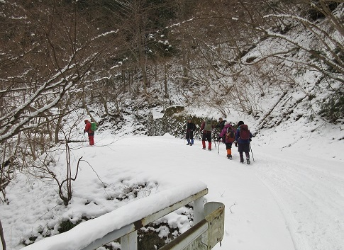 3 林道を登山開始