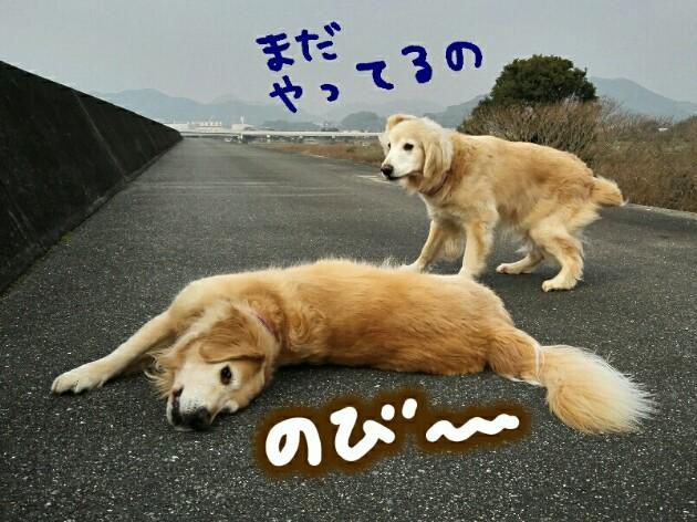 20180120032046041.jpg