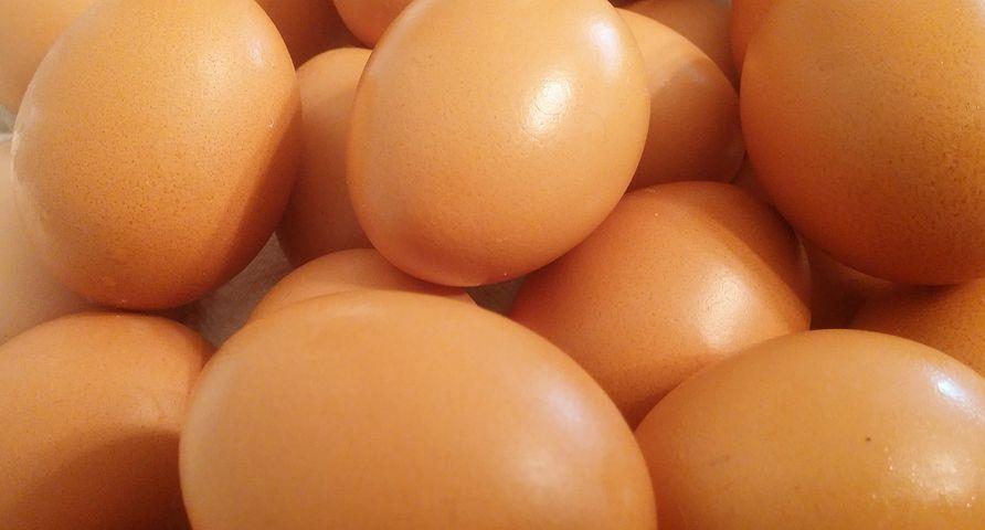 eggs-449191__480.jpg