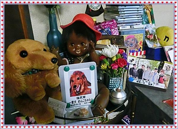 2018(H30)1.28(sun)長男健太郎命日&めんこちゃん誕生日