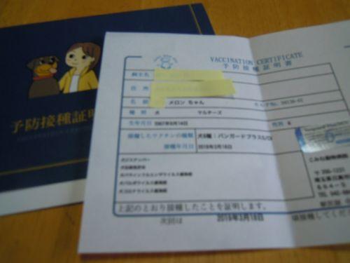 DSCN9195.jpg