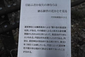 D7H_4383-2.jpg