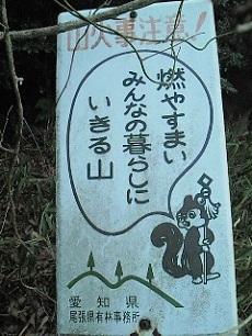 NEC_0849.jpg