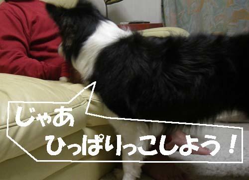 f0114893_21452100 (1)