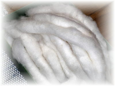 綿紡ぎ6-3