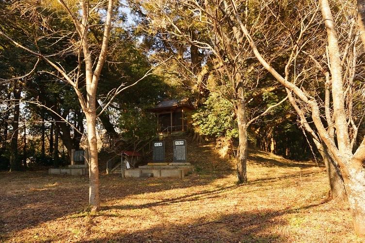 08 大生殿神社と桜