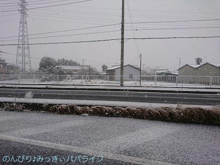 snow2018012201.jpg