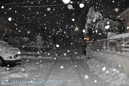 snow2018012205.jpg