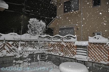 snow2018012209.jpg