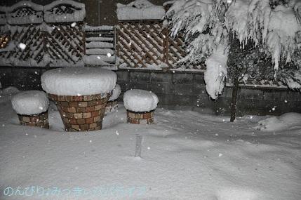 snow2018012210.jpg