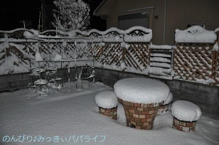 snow2018012211.jpg