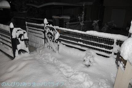 snow2018012212.jpg
