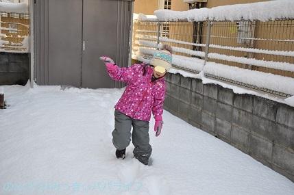 snow2018012217.jpg