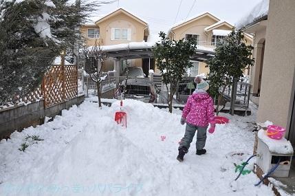 snow2018012218.jpg