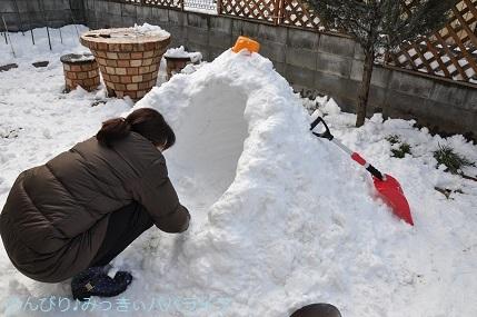 snow2018012219.jpg