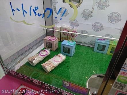 sumikkogurashi20180210.jpg
