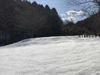 雪の虹色2018