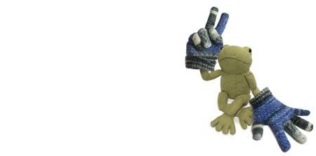 熱帯雨林の手袋とカエル