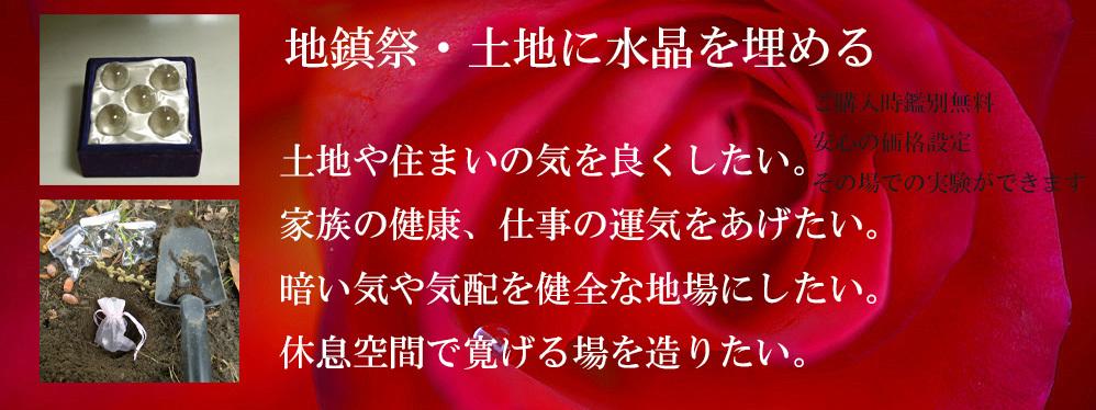 _DSC1131-11-1000-4[1]