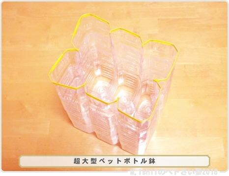 完成した超大型ペットボトル鉢