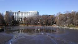 20180302井の頭公園19