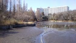 20180302井の頭公園18