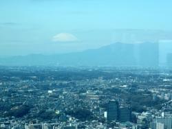 20180317横浜3
