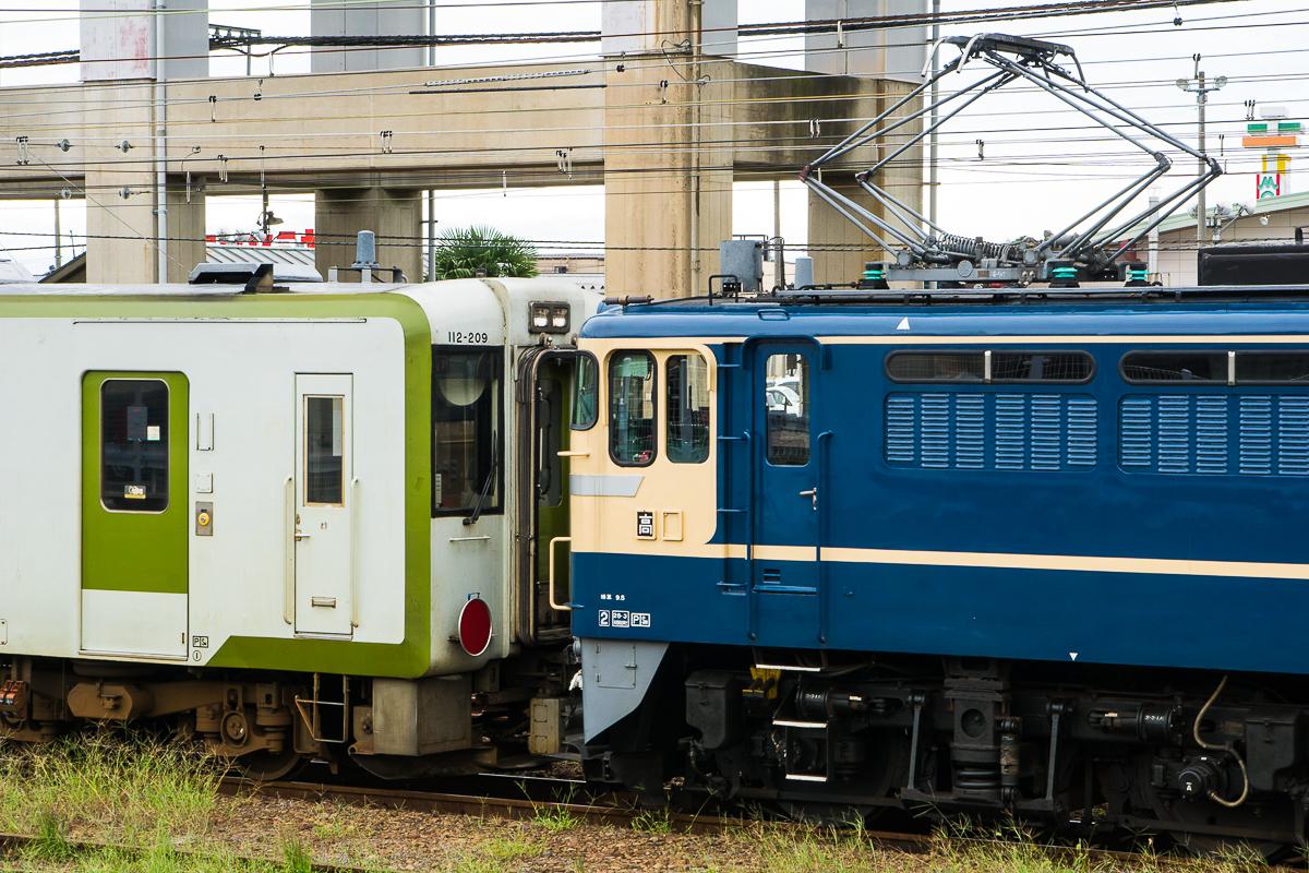 DSC09745.jpg