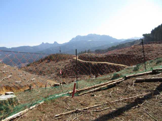IMG4930JPG広範囲の伐採地と英彦山