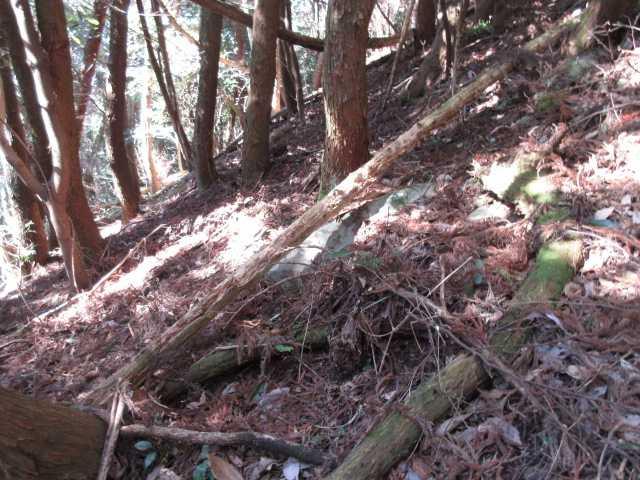 IMG4937JPG山頂まで荒れた急斜面