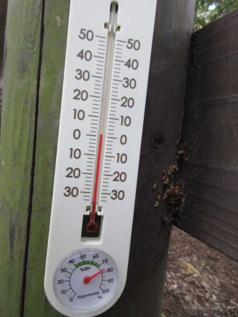 IMG5131JPG寒い