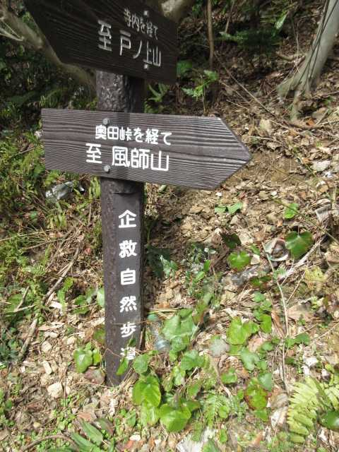 IMG5187JPG標識