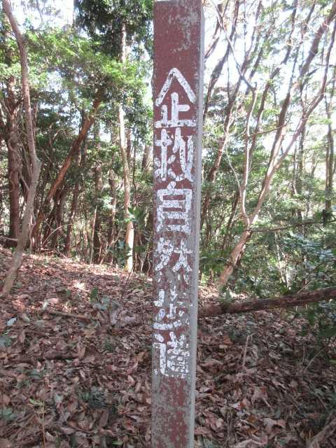 IMG5224JPG従来のコンクリート製の標識