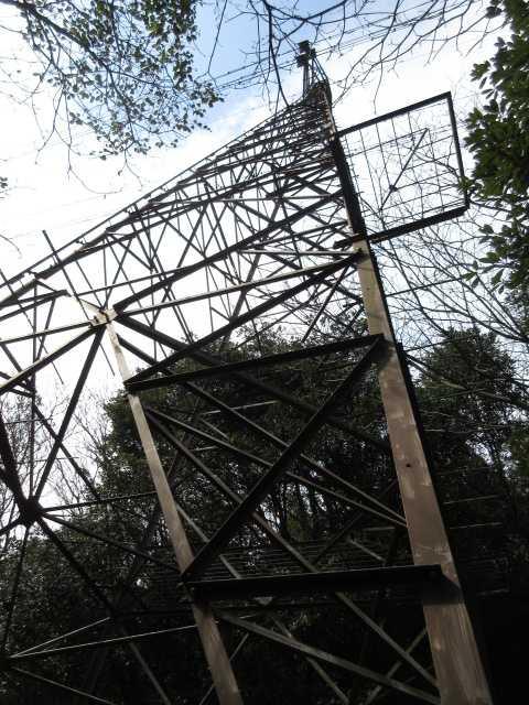 IMG5242JPG鉄塔で休む