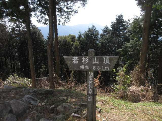 IMG5364JPG若杉山山頂