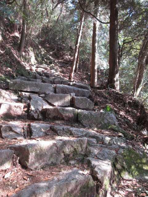 IMG5451JPG正面コースは石段コース