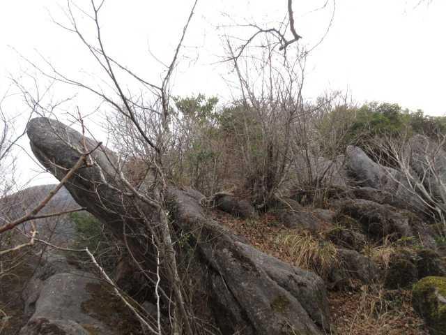IMG5553JPGイルカ岩