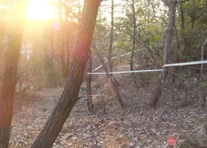 水晶山遊歩道3